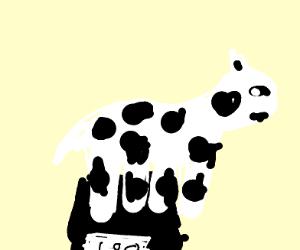 Bull/cow weighting itself