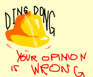 YOUR OPNION IS WRONG