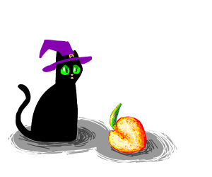 Wizard cat sits in shock near a peach.