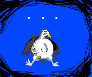 Seagull eats a wheel