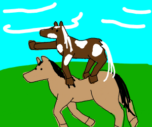 A spotted horse riding another horse