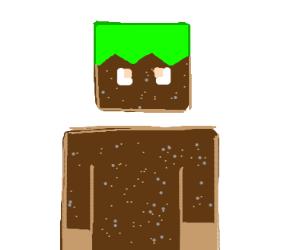 Human Minecraft grass block