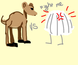 Camel VS Onion boi