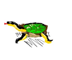 snurtle (snake turtle hybrid)