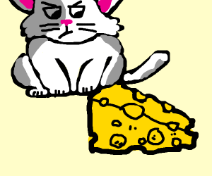 kitty is watching a piece of cheese