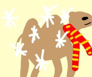 Camel Is Freezing To Death(Help It)