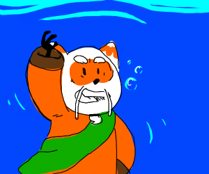 furry drowning in water