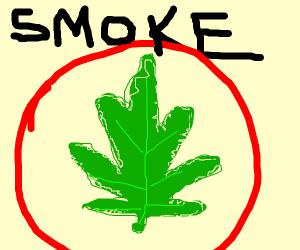 244eb89eee0 Weed drawing by OooOOOoOo - Drawception