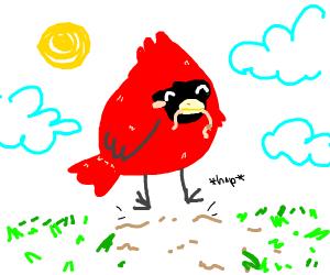 Little red bird hops with joy