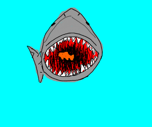 A shark about to eat a little fish