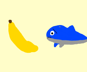 Banana frightens dolphin