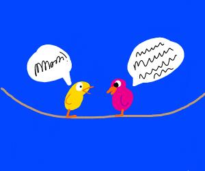 2 birds chatting