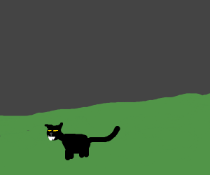 cat with pointy teeth in grass