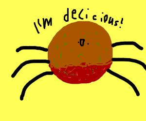 meatball spider