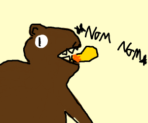 Bear eating a mc nugget