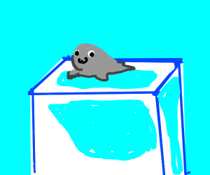 Cutie baby seal on a giant icecube