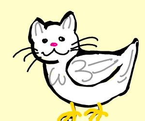 Cute bird-cat hybrid