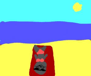 seal on beach in bikini