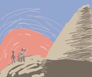 Lone traveler and camel reach Giza at dawn