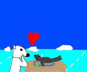 Polar bear falls in love with it's dinner