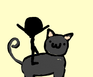 Person rides cute black cat