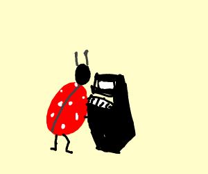 a ladybug plays the piano