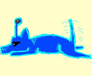 cute blue alien dog