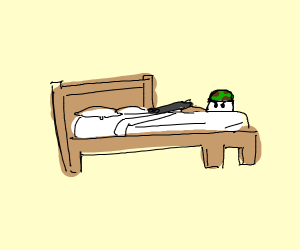 DYK that beds are used 4 mini trench warfare?
