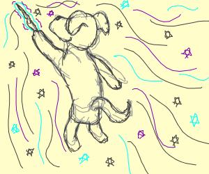 Magician dog