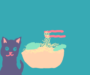 A perfect ramen, but with cat