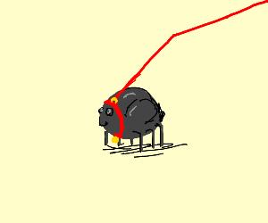 Pet Bug
