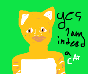 Yes I am indeed a cat