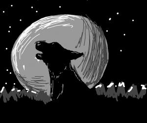 Dog howling at the moon