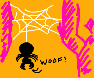 Spider says woof