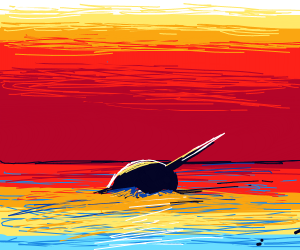 Narwhal in a beautiful ocean sunset