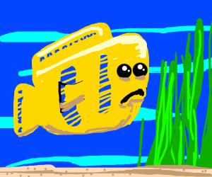 Flounder (the Little Moermaid) is sad