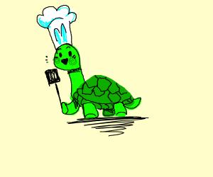 Turtle Chef