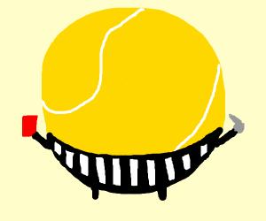 A tennis ball umpire