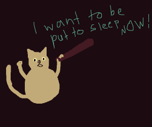 The cat with the bat demands to be put to sle