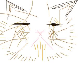 abstract grumpy cat