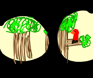 Binocular view spectating a parrot on a tree