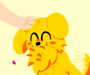 Yellow dog loves being pet