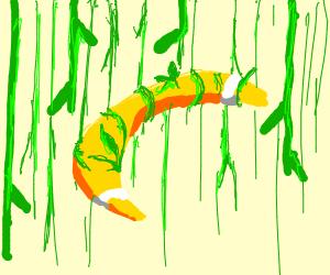 Boomerang caught in vines