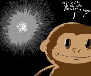 Monkey Thinks about life