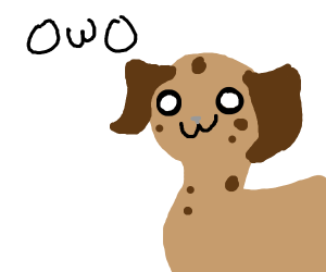 OwO what's this??