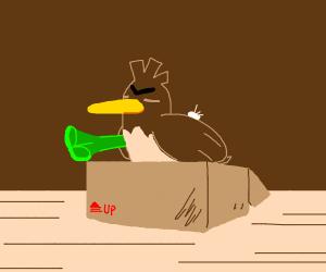 duck on box