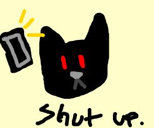 black cat hates getting phone calls