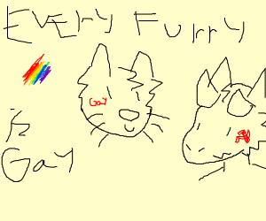 Gay furries