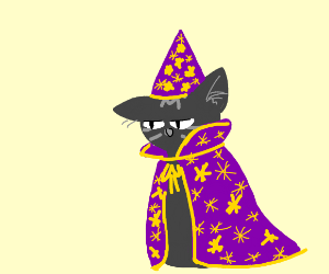 A grey wizard cat