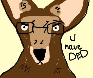 Kangaroo Inspector